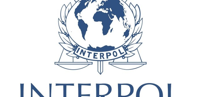 interpol_logo(800x800)